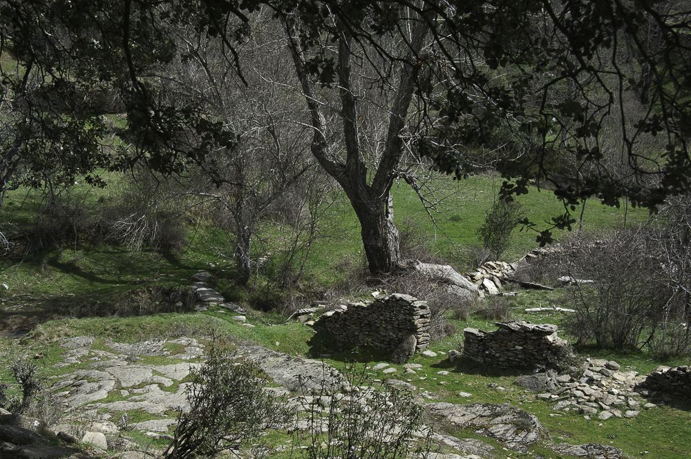 Camino a la fuente Vieja