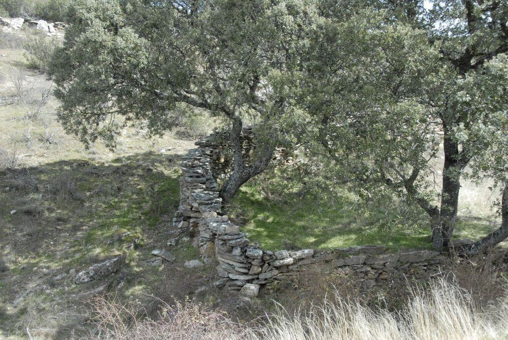 Camino el Saledillo II