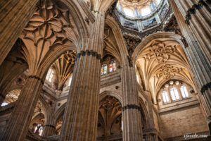 Catedral Nueva de Salamanca (II)