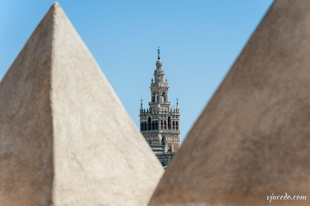 Desde las pirámides