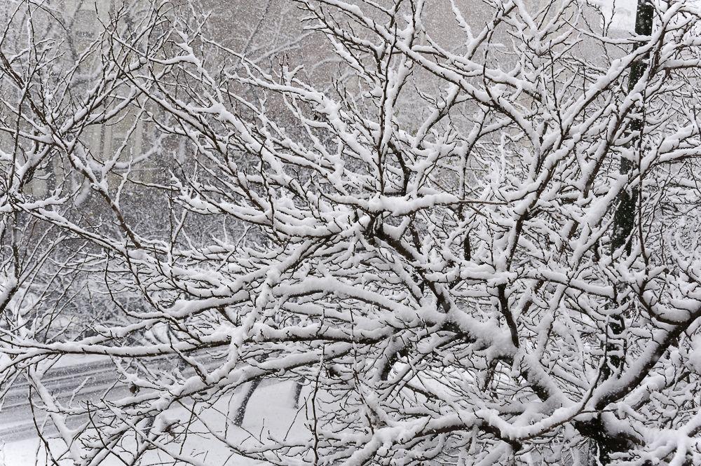 Madrid, nieve en el centro