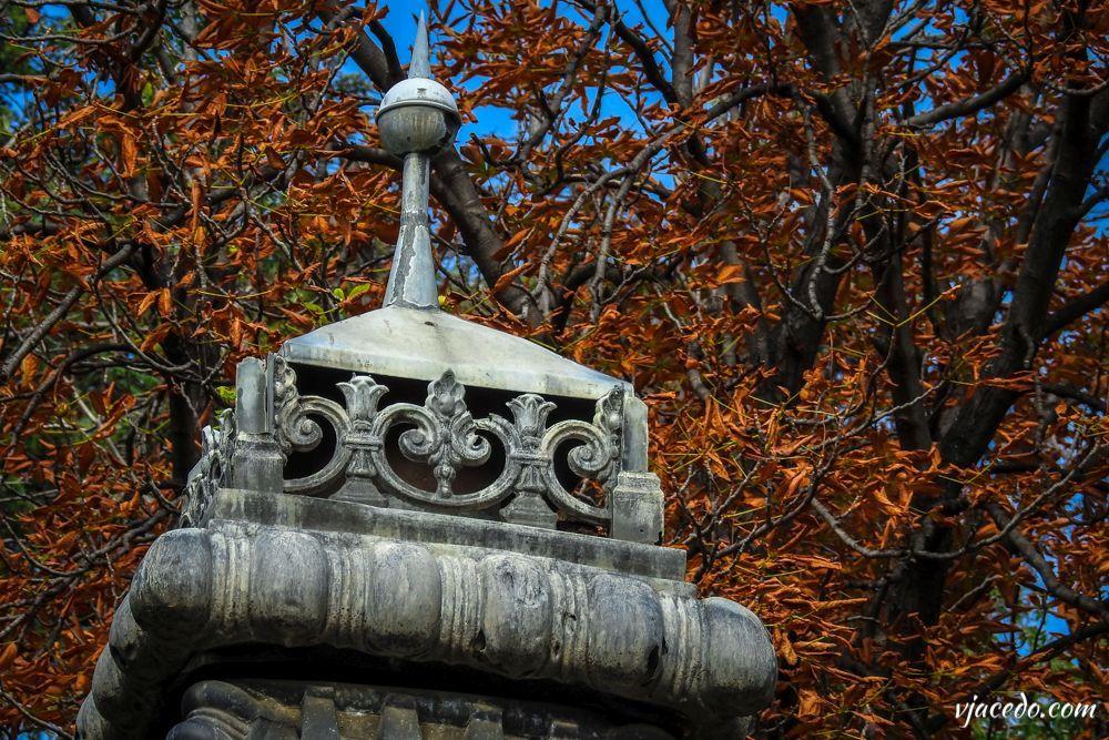Rincones del Berro en otoño (I)