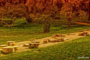Rincones del Berro en otoño (III)