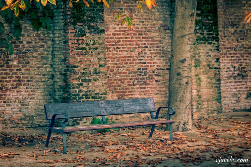 Rincones del Berro en otoño (V)