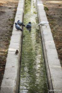 Rincones del Berro en otoño (VI)